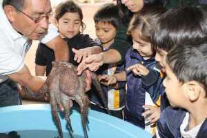 Miles de niños de distintas partes de la ciudad visitan la muestra cada año