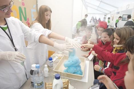 Durante tres días la UA recibirá a niños de la comuna que tengan intereses científicos
